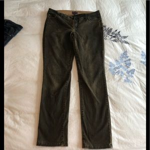 NYDJ coated brown denim petite length
